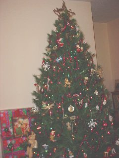 OUR CHRISTMAS TREE,12-06-2002